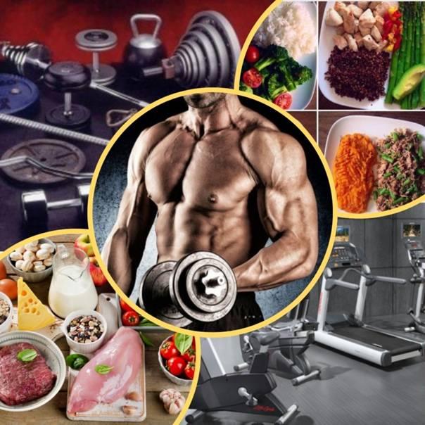Денис семенихин: биография, личная жизнь бодибилдера, в молодости, жена и дети, рост, вес, тренировки, питание, инстаграм