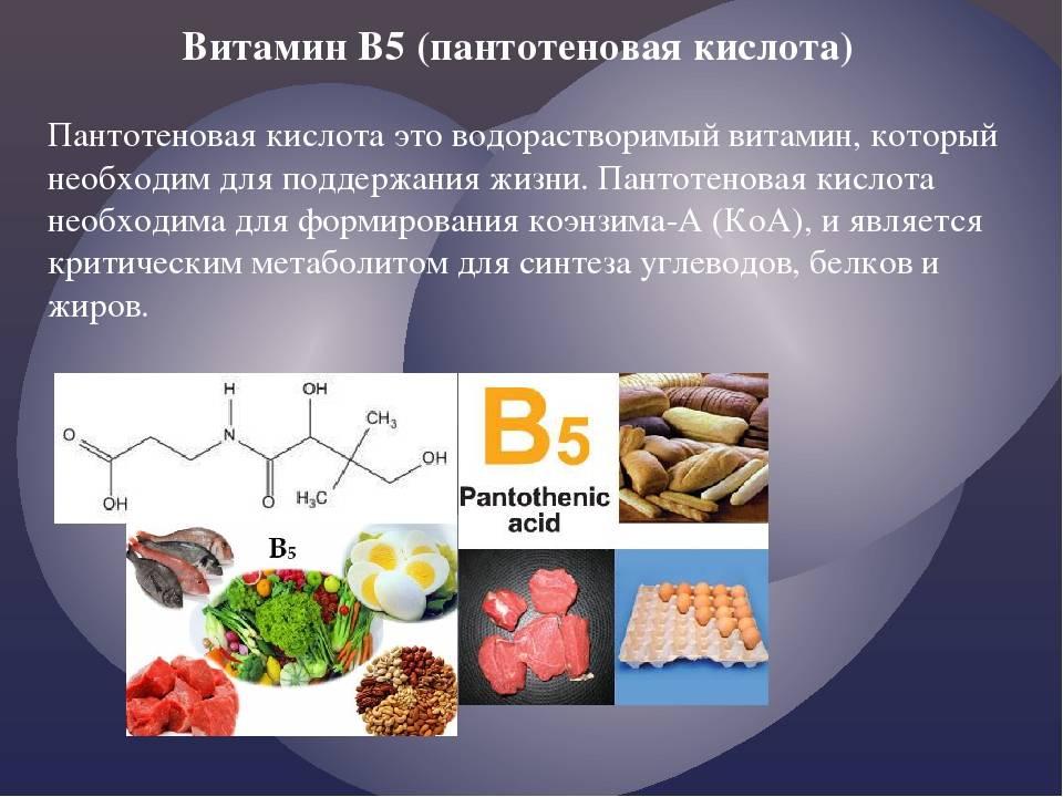 Витамин b3/pp