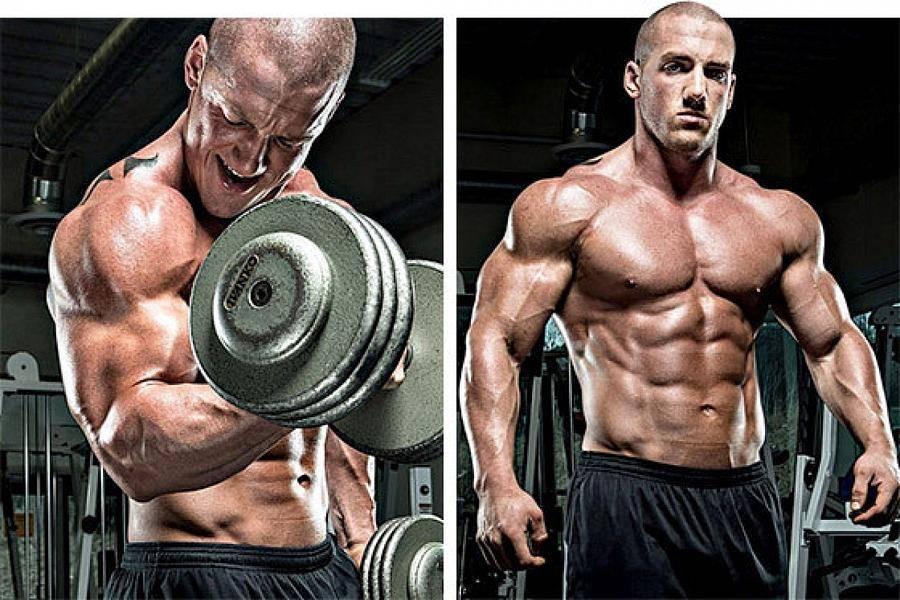 Гипертрофия мышц: обзор принципов тренировки для увеличения массы мышц. часть 1 | fpa