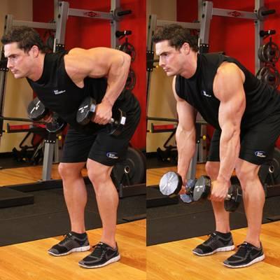 Как накачать широчайшие мышцы спины в домашних условиях: упражнения без тренажеров