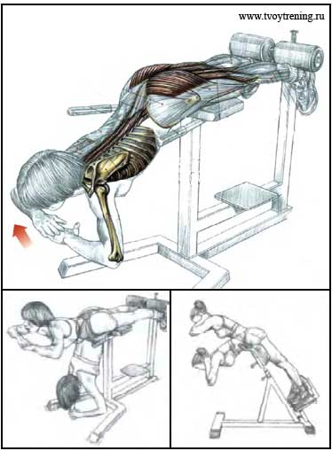 10 лучших упражнений для спины в тренажерном зале