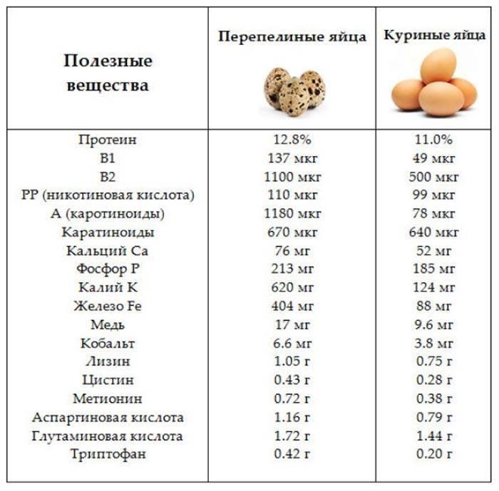 Холестерин в перепелиных яйцах: можно ли есть их при высоком уровне холестерина?   продукты   diabetystop.com