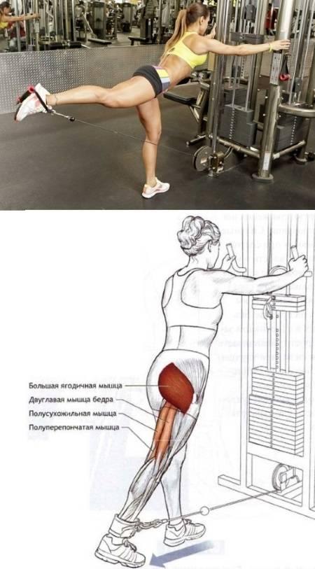 Можно ли накачать ноги приседаниями без веса? как накачать ноги?