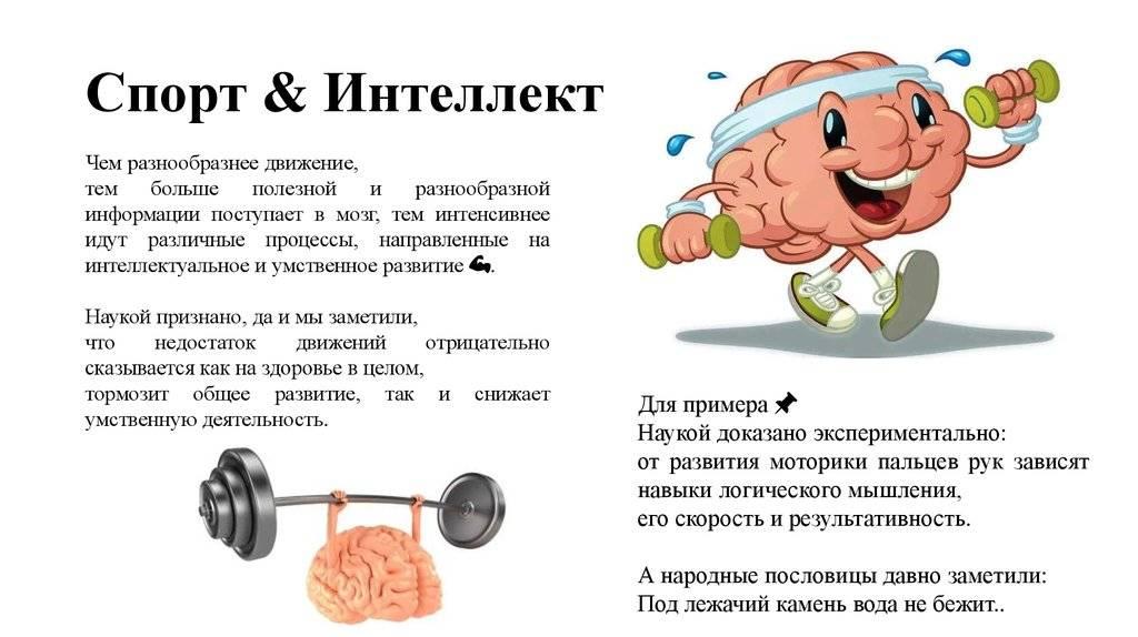 Что такое и для чего нужна нейромышечная связь — спорт и красота