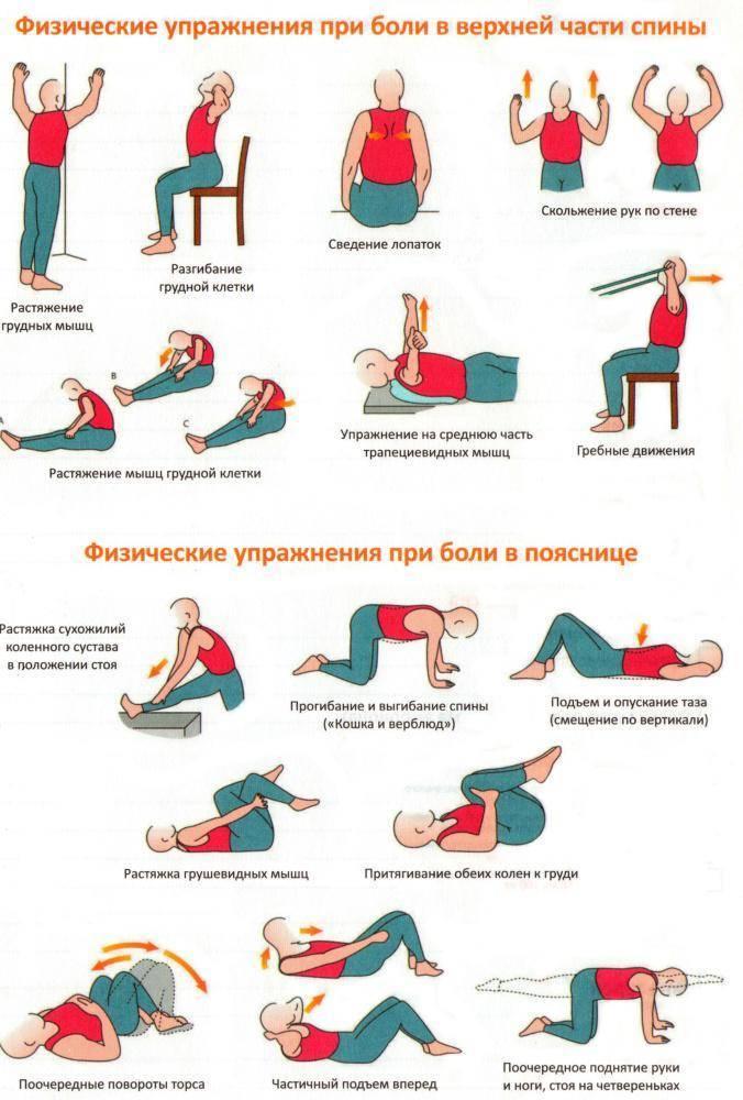Упражнения бубновского для позвоночника в домашних условиях, виды позвоночных грыж