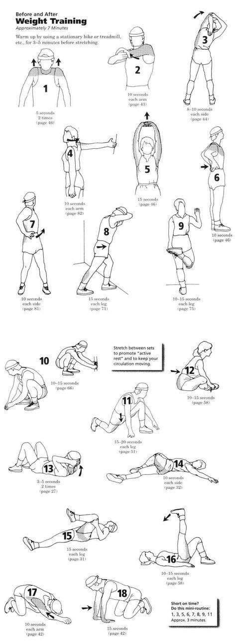 Тренировка для начинающих дома: 50 упражнений (фото)
