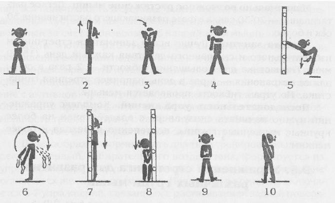 Растяжка плеч и плечевого пояса: комплекс упражнений для начинающих