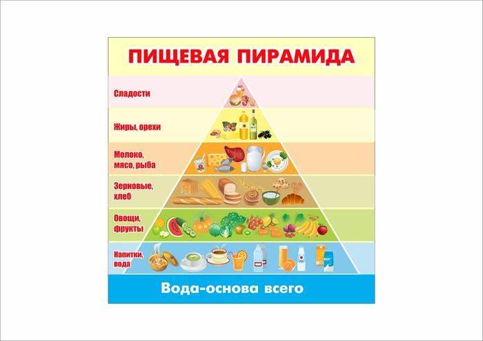 Пирамида питания – цели и рекомендации ученых по здоровому питанию