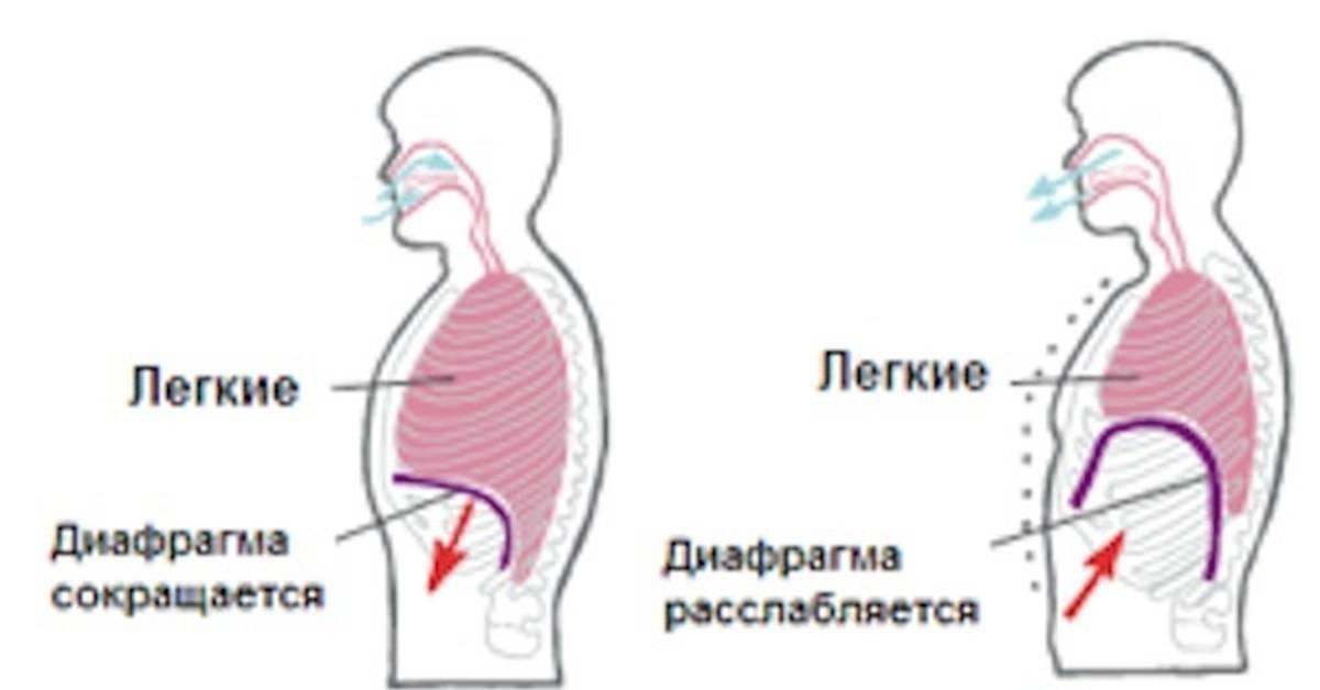 Гипервентиляционный синдром: диагностика, лечение, симптомы