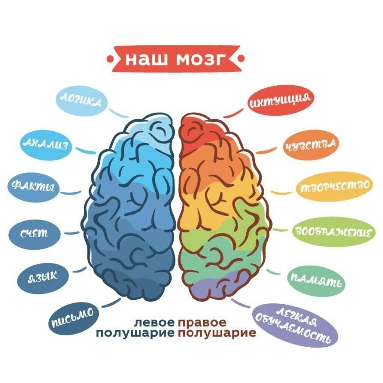 Зачем нужна ментальная связь мозг-мышцы?