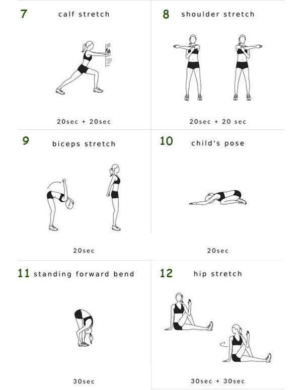 Заминка после тренировки: польза, упражнения и тренировочные программы   rulebody.ru — правила тела