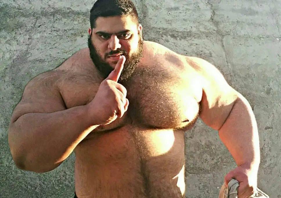 """""""иранский халк"""" дебютирует в кулачных боях. мир мма захлестнула волна гигантов."""