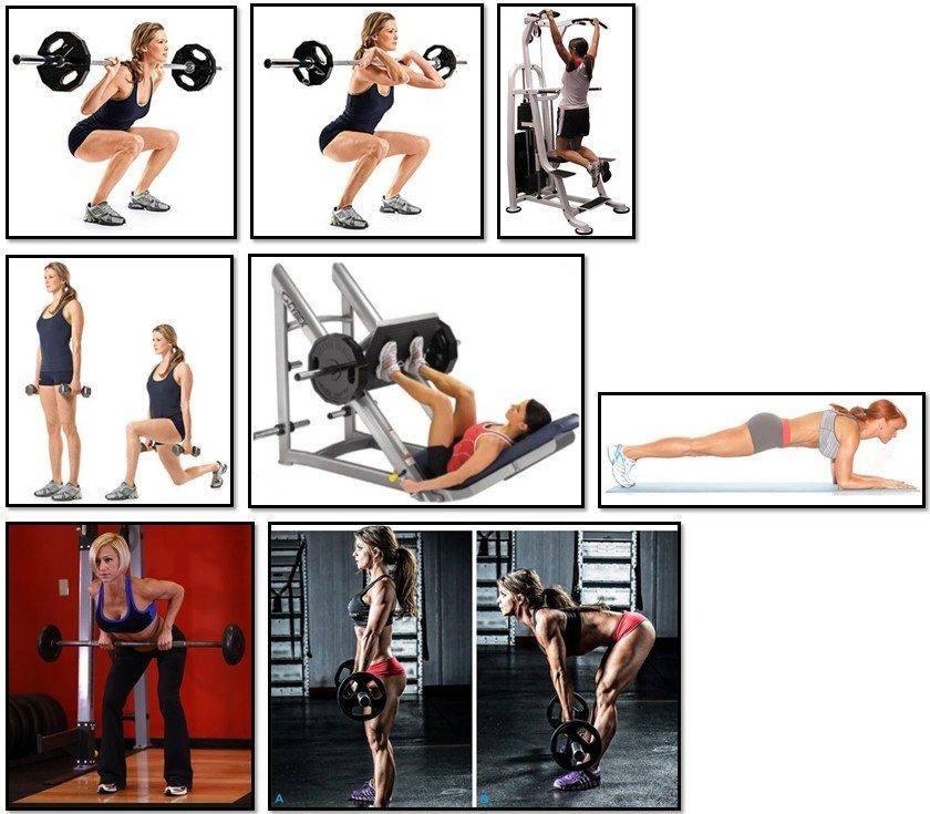 Как накачать попу в зале: лучшие упражнения, диета и программы тренировок для девушек