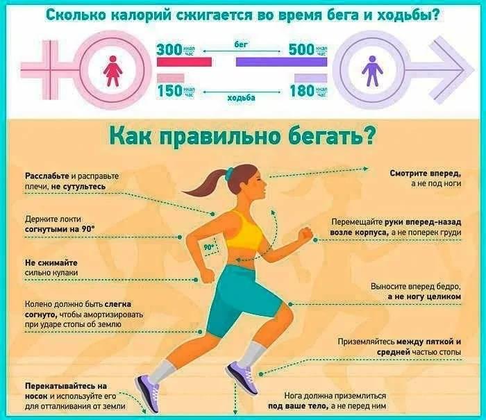 Бег по вечерам для похудения живота и боков: график тренировок