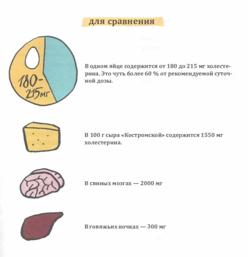 Яйцо утиное: характеристики и преимущества   food and health