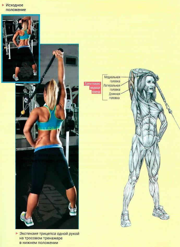 Для чего нужны изолирующие упражнения