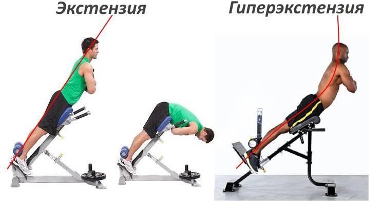 Гиперэкстензия: техника выполнения упражнения на тренажере, какие мышцы работают
