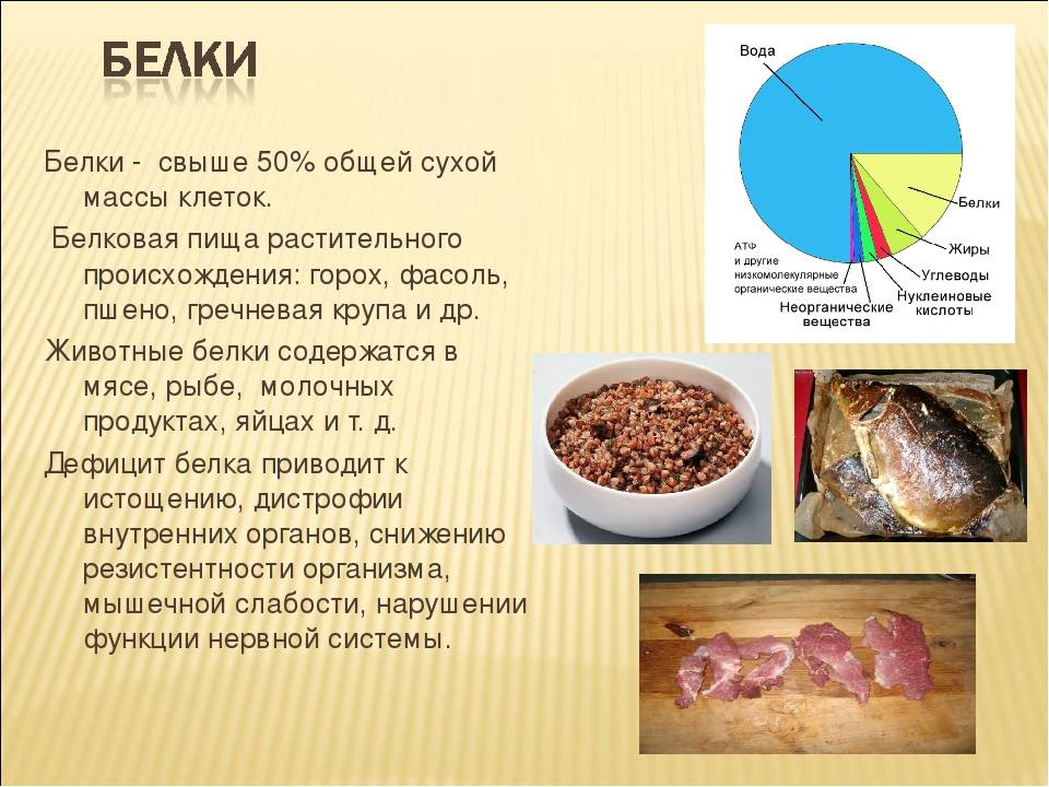 Сколько белка можно есть за один раз? миф про 30 грамм - fitlabs / ирина брехт