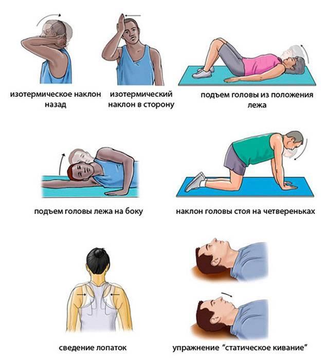 Как накачать бычью шею дома (упражнения, программа тренировок)