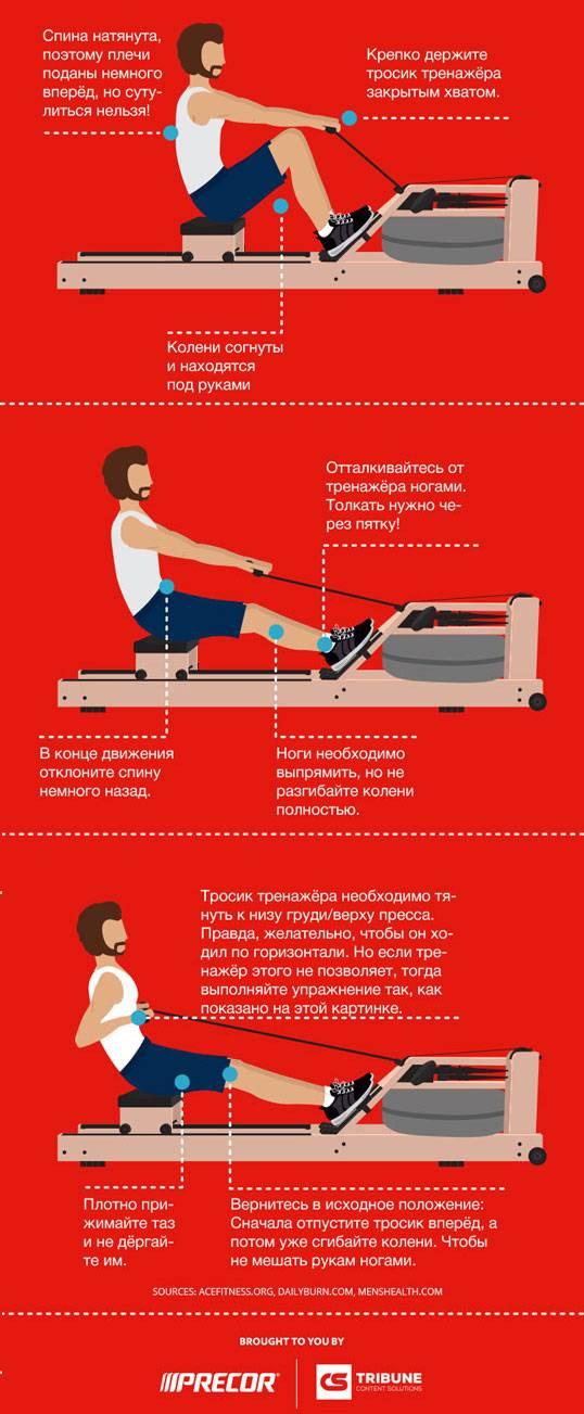 Гребной тренажёр как тренироваться и какие мышцы работают при тренировке