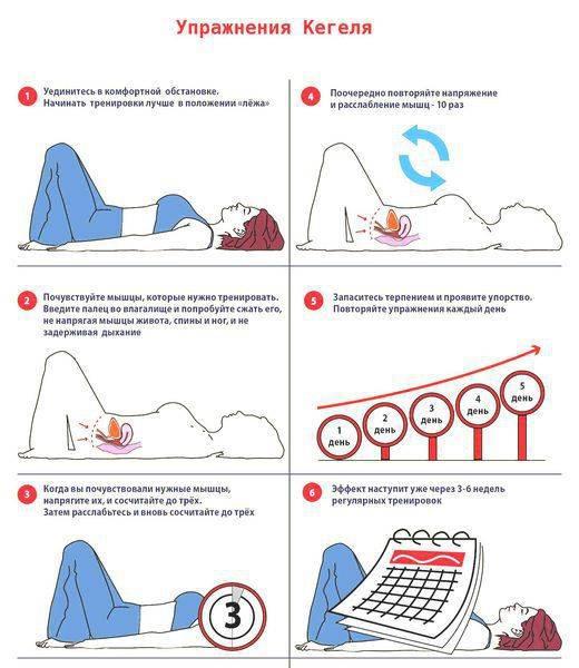 Упражнения для укрепления мышц тазового дна (упражнения кегеля) у мужчин