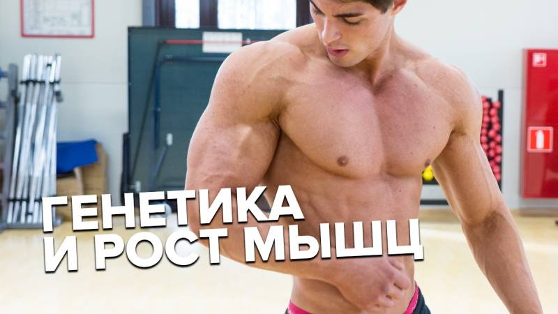 Как быстро растут мышцы? сколько времени нужно, чтобы накачаться?