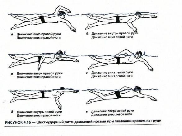 Как правильно плавать при шейном остеохондрозе