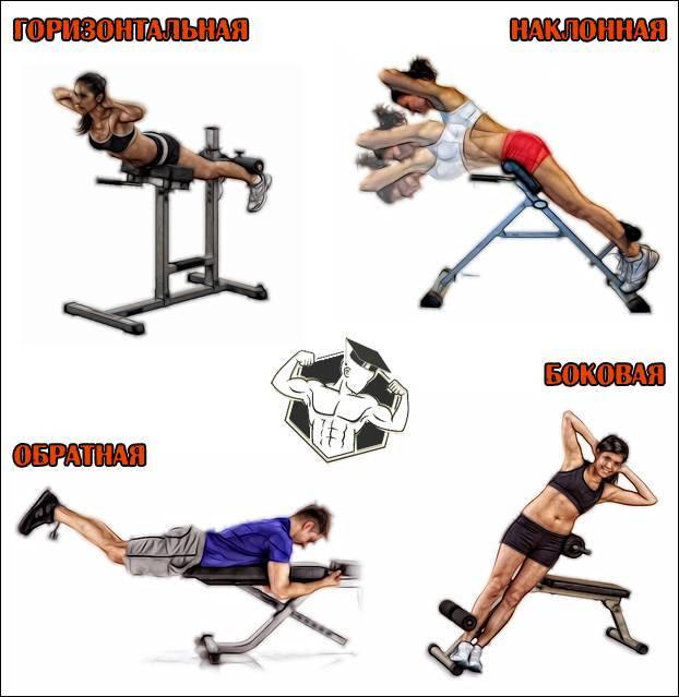 Упражнение гиперэкстензия, как правильно делать гиперэкстензию и техника выполнения — atletiq.com