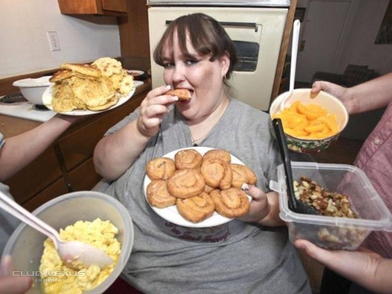 Как алкоголь влияет на организм человека, толстеют ли от него? обзор