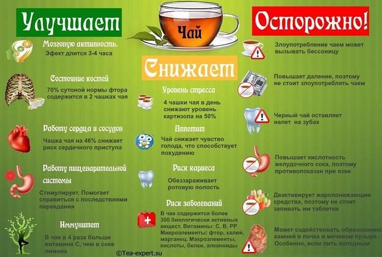 Мифы о пользе зеленого чая - зеленый, чай, женьшеневый, чай, плиточный, чай