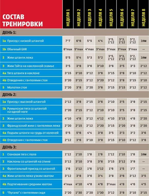 Как накачаться эктоморфу: лучшая программа тренировок для набора мышечной массы