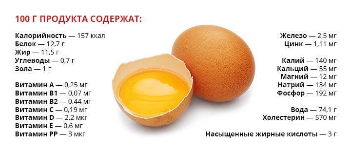 Куриные яйца — в чем польза для мужчин и для женщин? состав, кбжу