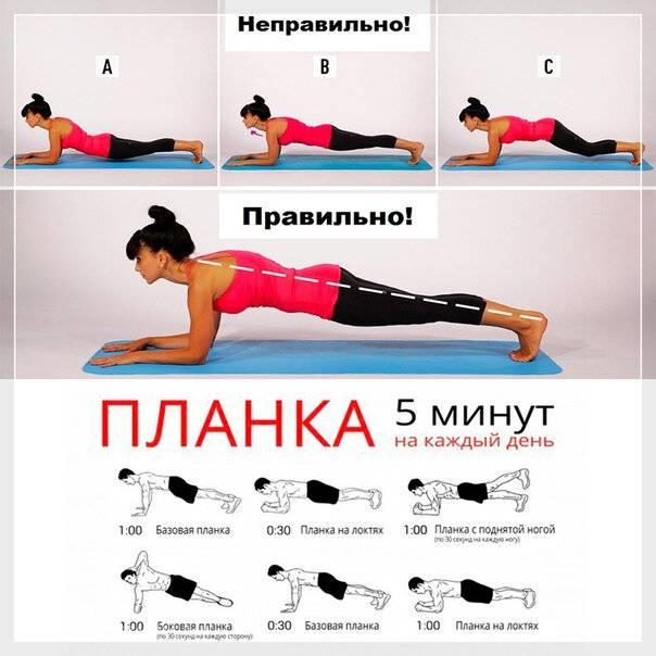 Горизонтальное положение: упражнение планка – все боевые искусства и единоборства
