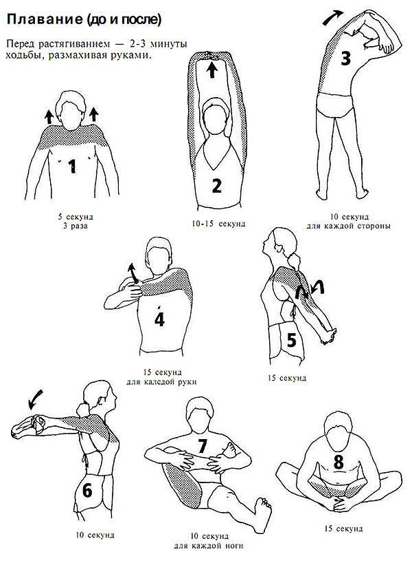 Ротатор плеча комплекс упражнений и разминка для плеч: видео