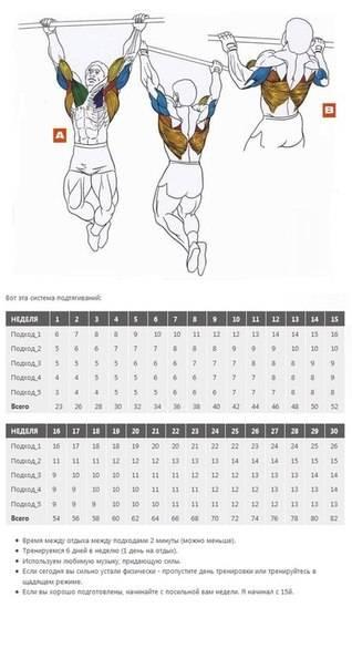 Как увеличить подтягивания, если есть лишний вес?