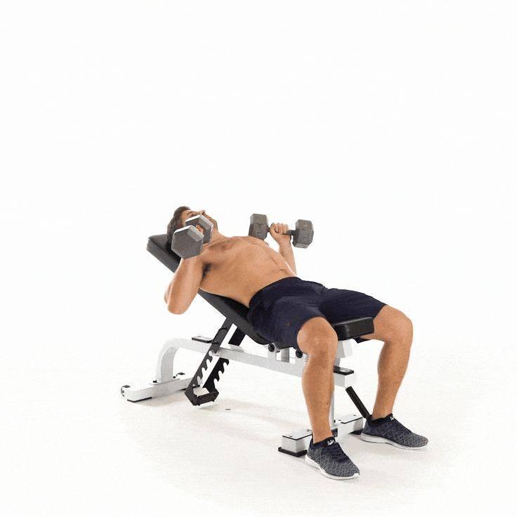 Функциональный тренинг: упражнения с гантелями (фото) :: тренировки ::  «живи!
