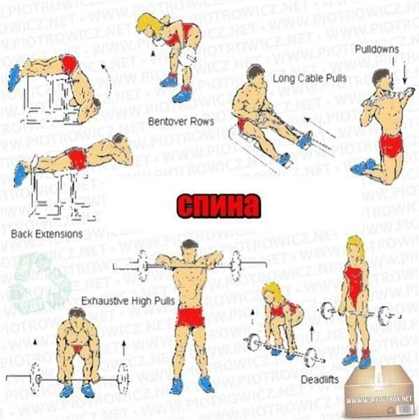 Руководство по упражнениям для стабилизации core. часть 1