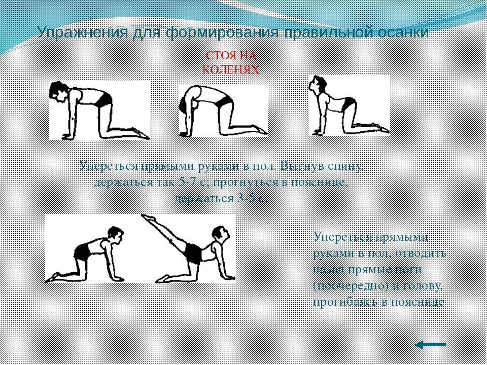 Как исправить сутулость: причины сутулости, упражнения;
