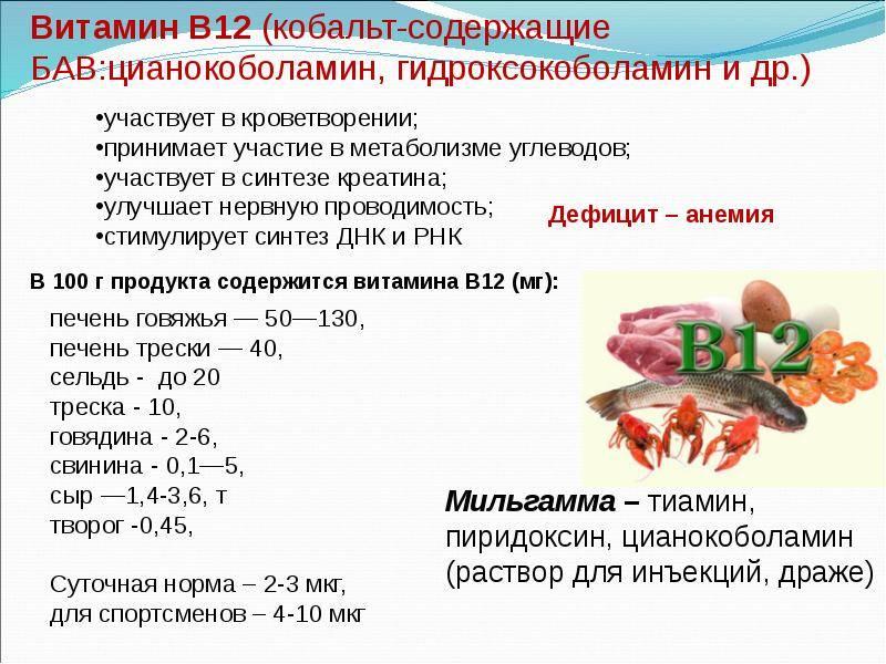 Продукты питания богатые витамином b4 - холин, липотропный фактор