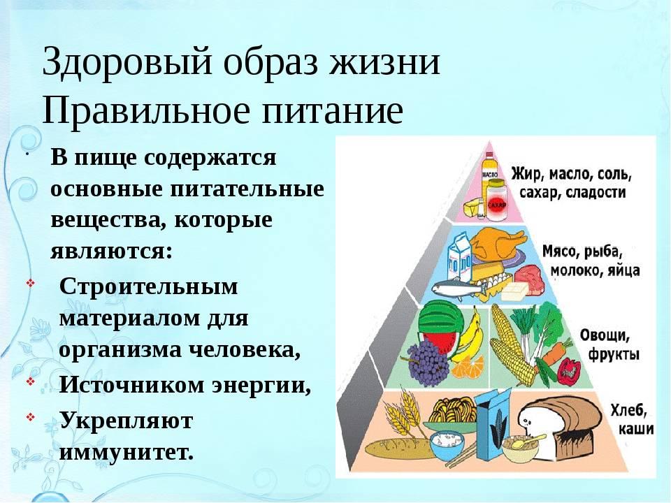 Правила здорового питания: основные принципы составления рациона