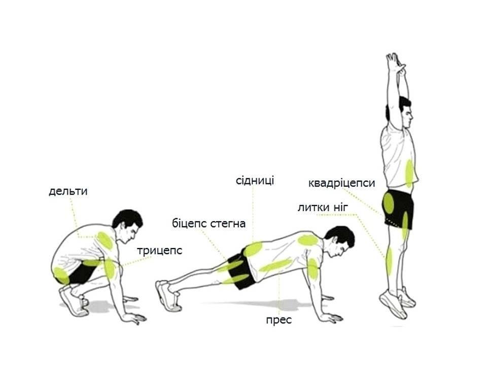 Бурпи что это такое? особенности упражнения и история появления бёрпи