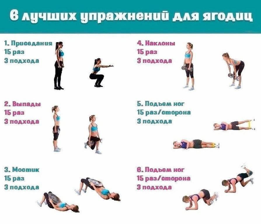Эффективные упражнения для ягодиц. правильный комплекс упражнений для большой попы в зале