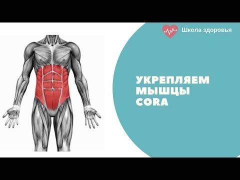 Что такое мышцы кора и зачем их укреплять?