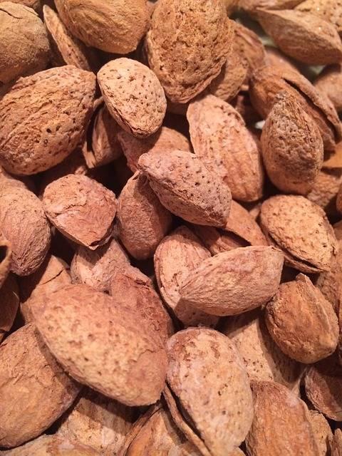 Выбираем самые полезные орехи: грецкие, кедровые, фундук или миндаль? употребление самых полезных орехов в разном возрасте