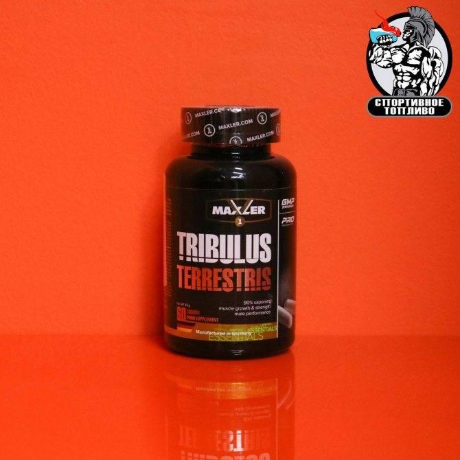 Tribulus terrestris 1200 мг 60 капсул (maxler) купить в москве по низкой цене – магазин спортивного питания pitprofi