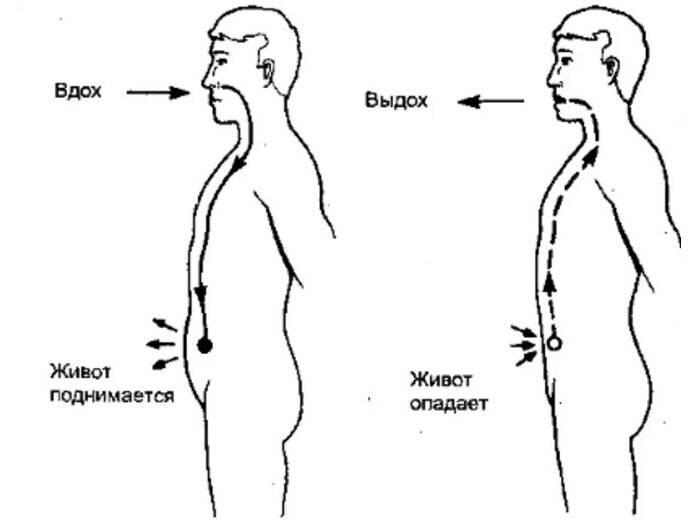 Правильное дыхание, как научиться дышать правильно