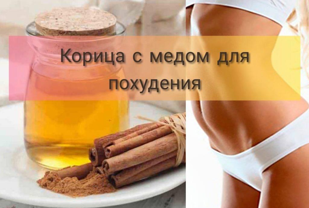 Корица с медом для похудения: лучшие рецепты и отзывы