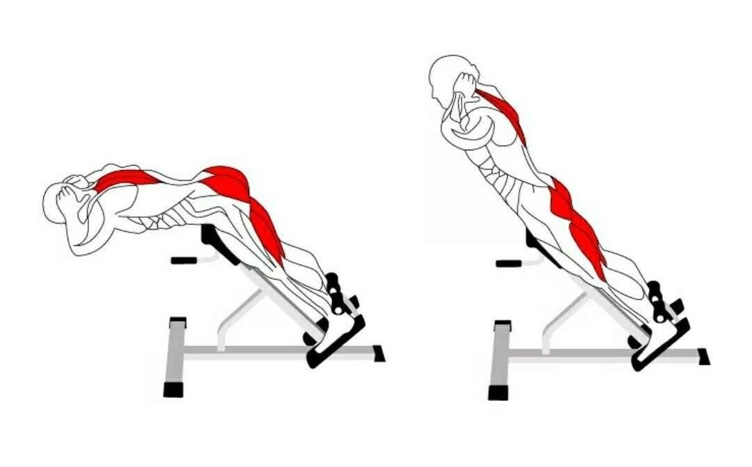 Гиперэкстензия ➤ базовое упражнение для мышц спины, ягодиц и бёдер