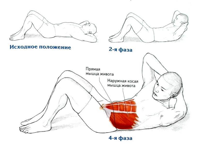 """Упражнение для пресса """"скручивание"""": техника выполнения, распространенные ошибки, фото - tony.ru"""