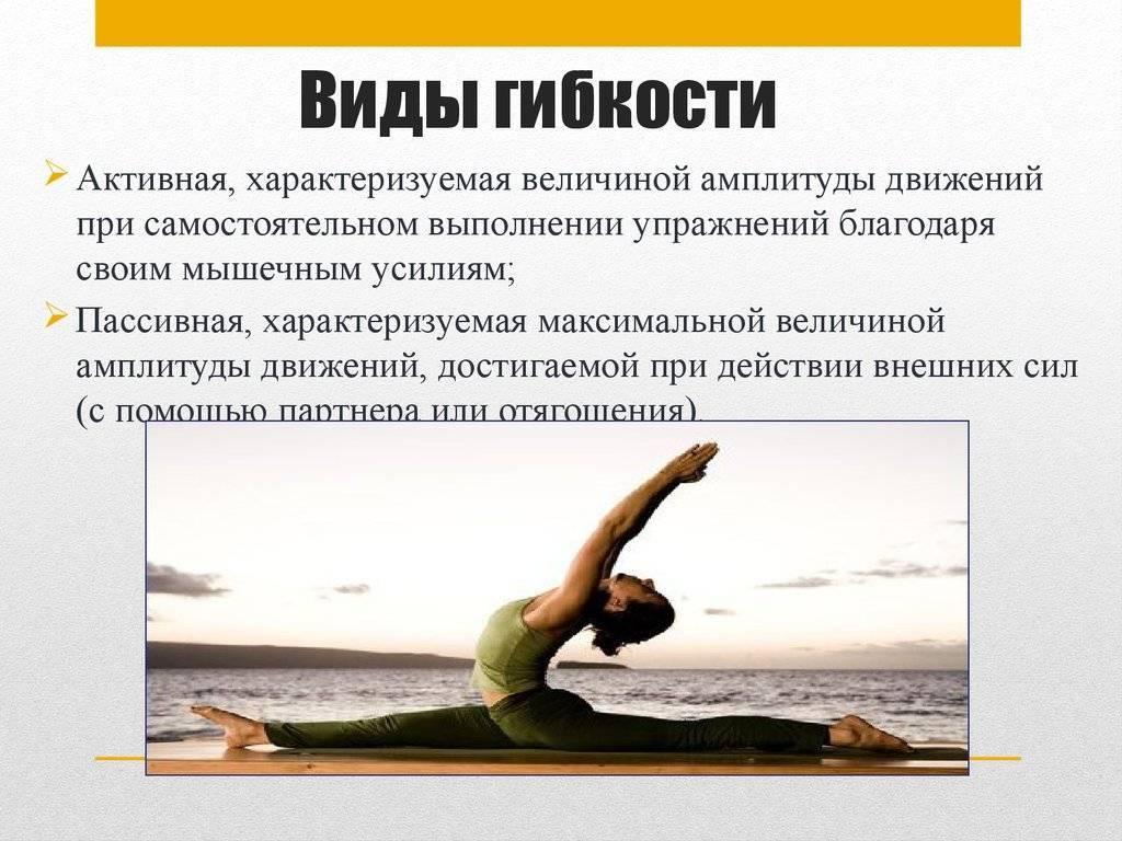 Сайт о плавании: гибкость - виды, обуславливающие факторы, методы развития, упражнения на растягивание